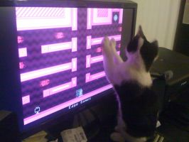 chinaski plays vvvvvv by lovechairmanmeow