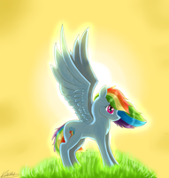 Sunshine Dashie by dragonwolfgirl1234