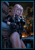 Black Canary Colors Vic55b by vic55b