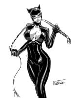 Inksketch: catwoman by Shono