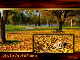 Molly In Autumn by PeterPawn