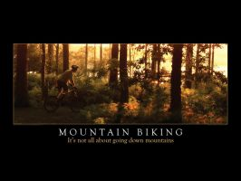 Mountain Biking Wallpaper 1600 by smokeymac