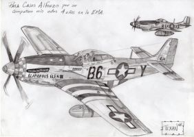 Comission F-51 Mustang by Maverick-21