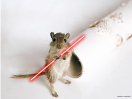 Star Wars: Jedi Rat by danielmartins