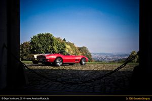Stingrays at Rokoko Castle III by AmericanMuscle