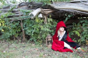 Little red riding hood stock 12 by HigherSeeking