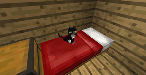 Minecraft Cute Baby Kitty On My Bed ^_^ by SonicTheDashie