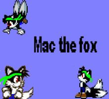Mac the fox by CozandTails