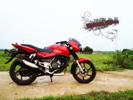 My Ride Pulsar 180 by Hoodiboy