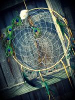 Large Curled Peacock Dream Catcher by xsaraphanelia