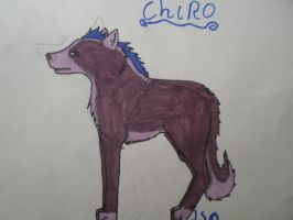Chiro by Kihomi-doglover