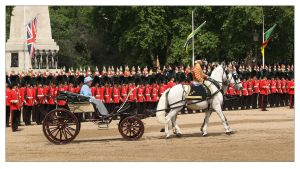 Trooping The Colour - 4 by syphonvector