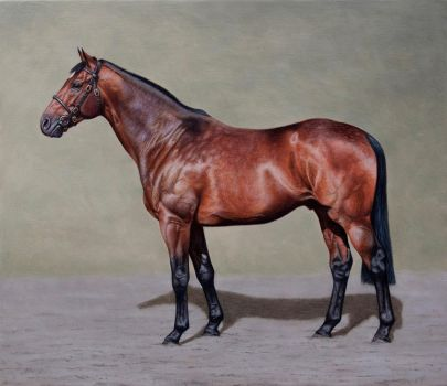 Thoroughbred Portrait. Oil on panel. 12x 10 inches by painterman33