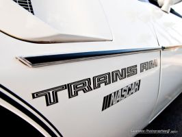 Trans-AM by Swanee3