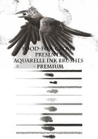 Aquarelle Ink Brushes - Premium by Food-For-Crows