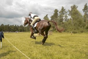 Eventing Wide Angle - Full Speed Gallop 08 by LuDa-Stock