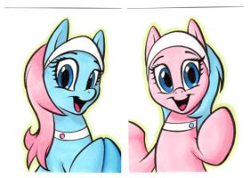 ALOE and LOTUS Cards by RetroStarLing