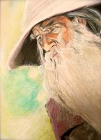 Gandalf the Grey by ShanghaiSarah