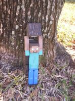 Mine Craft Man has wood by SuperMouseChan