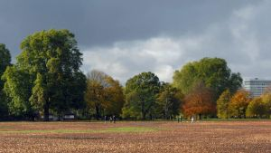 Hyde Park (HD Wallpaper) by Pimpernel