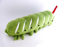Timmy the hornworm 2 by WeirdBugLady