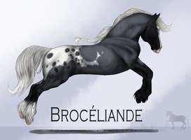 Broceliande by The-White-Cottage