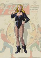 Black Canary by trisaber
