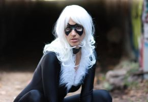 Black Cat ready to pounce by cosplaynut