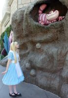 Alice in Wonderland: Which Way Should I go? by sarka1