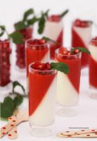 Pomegranate White Chocolate Mousse by theresahelmer