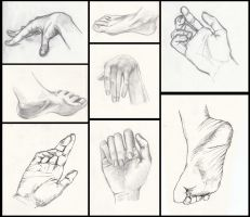 hands and feet by Alsdale