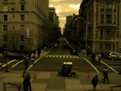 From the Steps of the Met by L2Mc