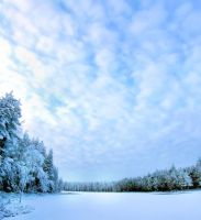 Winter is coming .. by KariLiimatainen