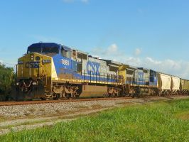Typical Southern CSX Train by Silverwolf-1ofmany