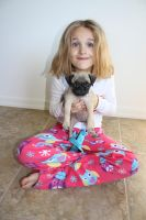 New Pug Puppy by icantthinkofaname-09