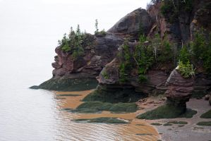Hopewell Rocks by LucieG-Stock