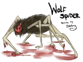 Wolf Spider by Stalcry