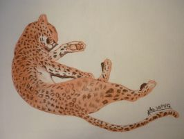 Leopard resting by Silver-tan