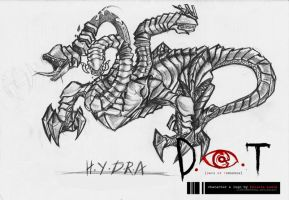 Hydra project D.O.T by lithiumportal