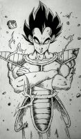 the king of all saiyans  by CrazyNativeRay