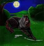 Wolf by WindSong83