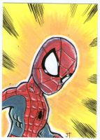 Spider-Man Senses are Tingling by johnnyism