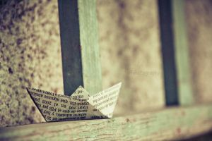 73/365 the lost boat by photographybyteri