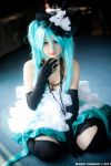 Miku  - Camellia by PuchysLove