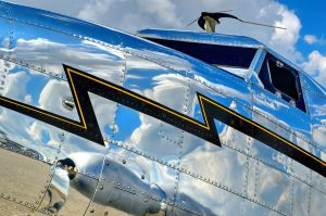 Reflecting On The Electra by aviationbuff