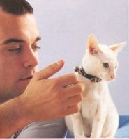 Robbie Williams and a  Cat by JaCkY506