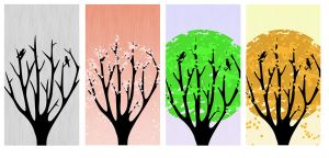 Four Seasons Tree design for Iphone and Ipad cases by NeoKyoStudio