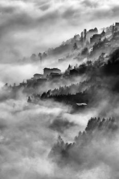 Into the Mist by gocemk