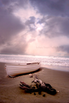 stranded_in_paradise by Serpentine-Gfx