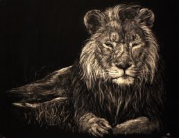 Lion Scratch by Dygee